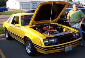 yellow-fox-body